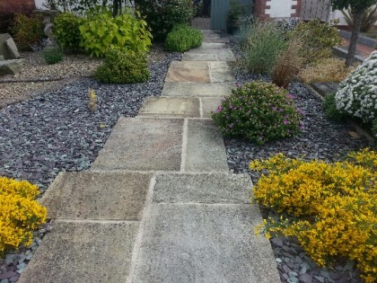 Indian Sandstone Path before cleaning and sealing image